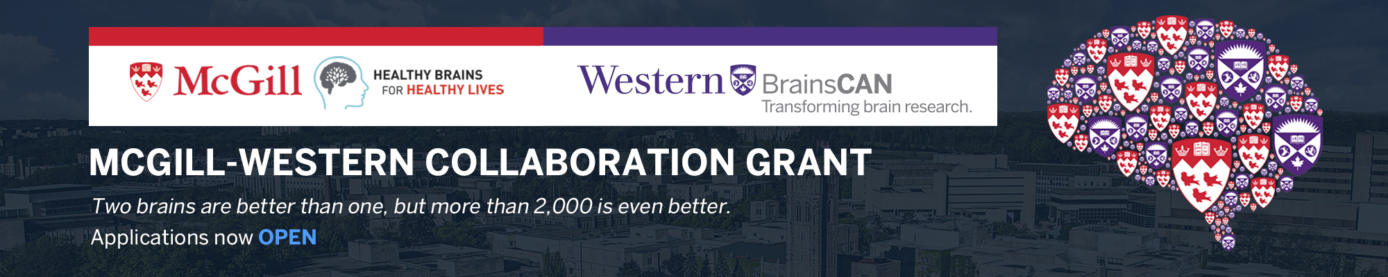 McGill-Western Collaborative Grant Banner