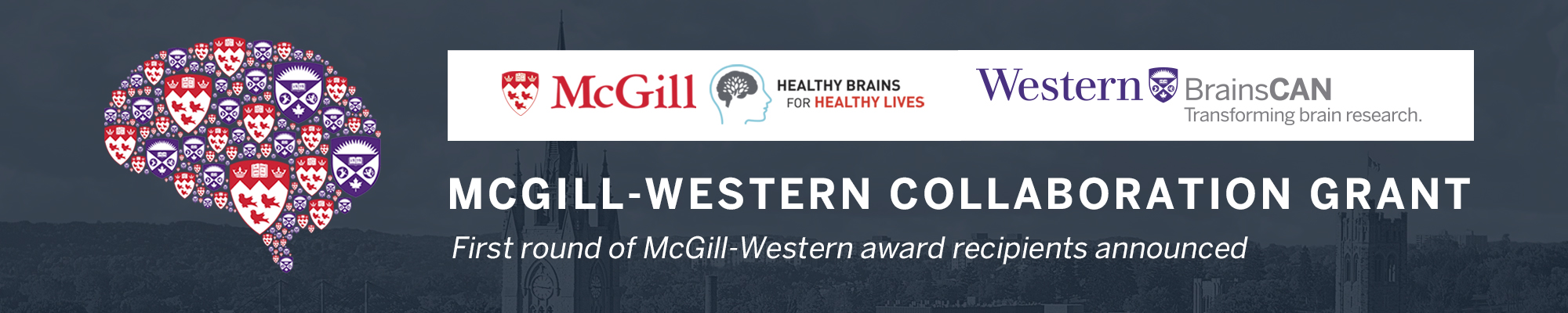 McGill-Western Collaboration Grant Banner